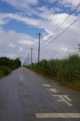 0811taramajima10.jpg