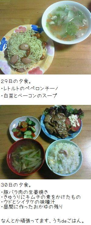 昨日一昨日の夕食