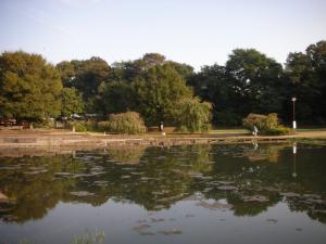 金山公園の池