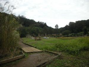 田圃のある風景