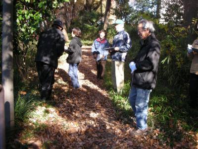 旭が丘斜面林測定