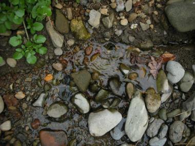 水の噴き出る穴