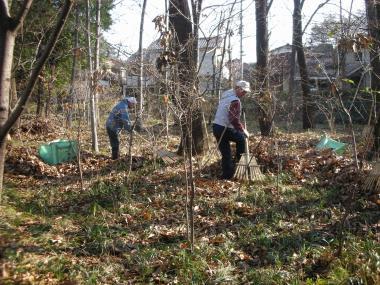 特別林落ち葉掃き