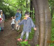 090530林の中で・・+014_convert_20090531181728