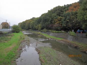 091112+空堀川の秋005_convert_20091112222108