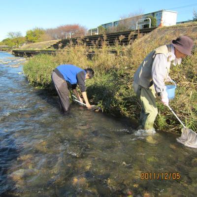IMG_0750魚類調査_convert_20111205233631