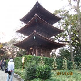 IMG_0818椿山荘3_convert_20111215121248