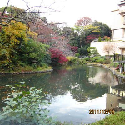 IMG_0825椿山荘6_convert_20111215142213