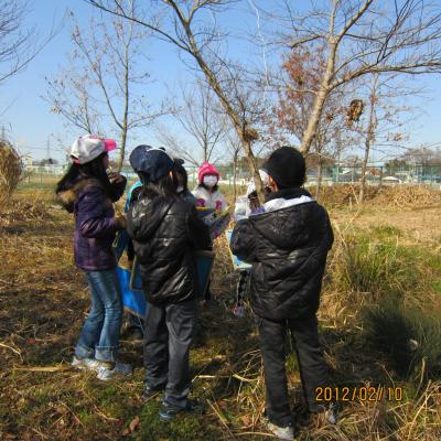 IMG_0165_環境学習convert_20120210235805