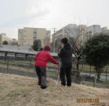 IMG_0238植栽準備_convert_20120302214242