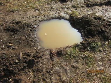 IMG_0424水のたまった植え込みの穴_convert_20120310220946