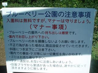 たんばら (1)