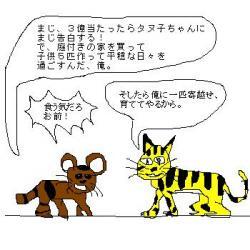 トラと狸の皮算用?