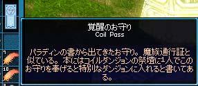 mabinogi_2009_03_01_029.jpg
