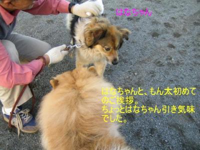 IMG_3474s.jpg