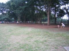 ドッグラン小金井公園