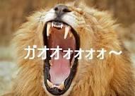 Mライオン1