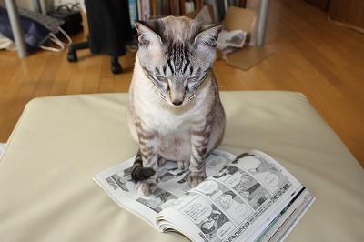 雑誌も読みます