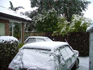 しっかり積もっている雪