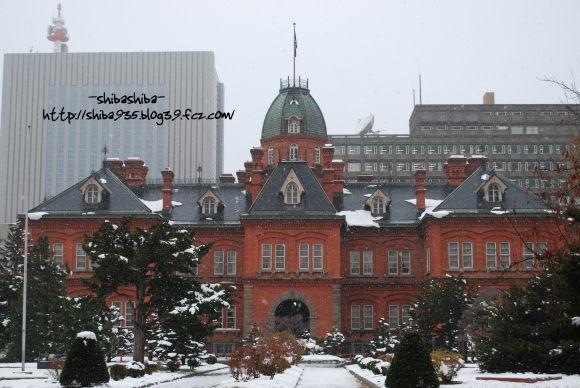 旧赤レンガ庁舎(初冬)