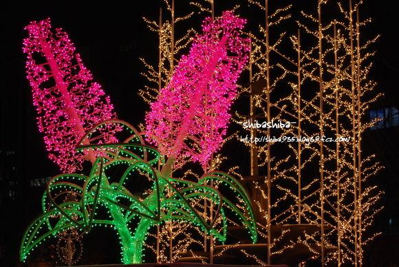 ライラック&針葉樹