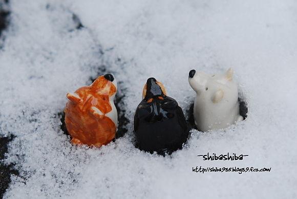 3柴雪の中