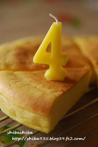 ワンコ用チーズケーキ