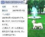 rino-big.jpg