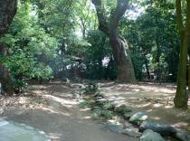 生田の森2