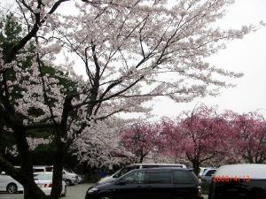 utatuyama.jpg