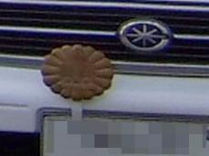 菊の紋章2?