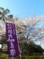松江城400年際のぼり