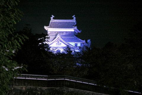 青く染まった松江城2