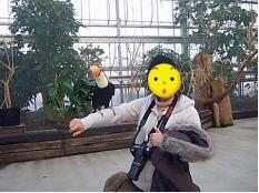 花鳥園02