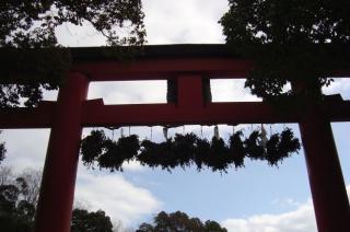 matuojinjya-torii.jpg