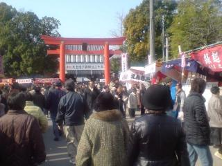 tubaki-torii3.jpg