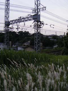 洋子20080617 007_1