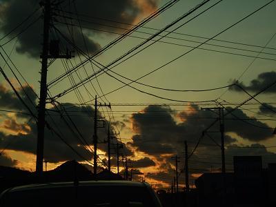 2008_0127(049).jpg