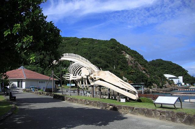 IMG_4746太地くじら浜公園