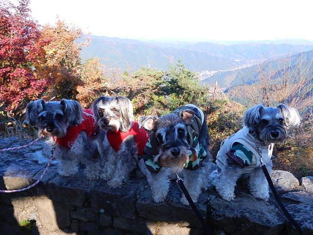 御岳山&西武ドーム
