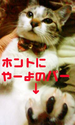 201202202123000.jpg