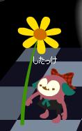 お花・・・