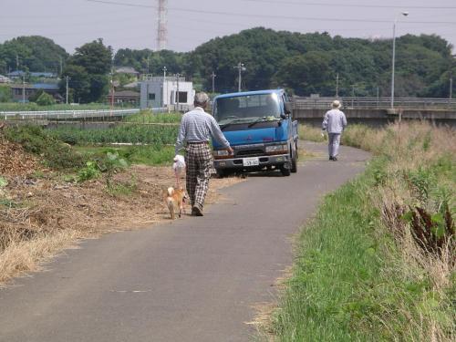 散歩する人々