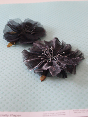 primaflower1
