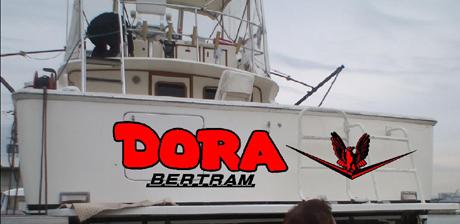 Dorapapa2.jpg