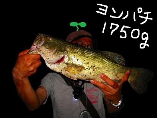 2009/07/30栗頭さん48バス