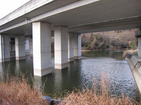 2008/02/07府中湖西高速高架下、二段の野池(下)