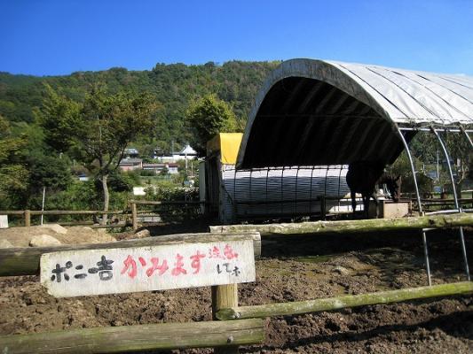 2008/10しおのえふじかわ牧場馬は咬む