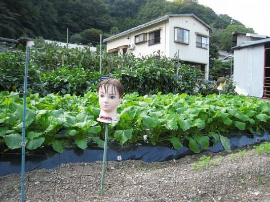 2008/10しおのえふじかわ牧場かかし