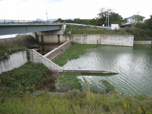 2008/10/27北條池からの流れ込み1